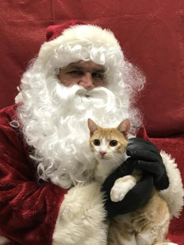Shadowridge Vet Santa Photo 2018-003