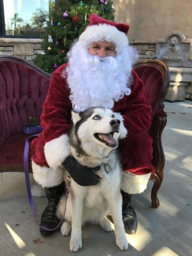 Shadowridge Vet Santa Photo 2018-070